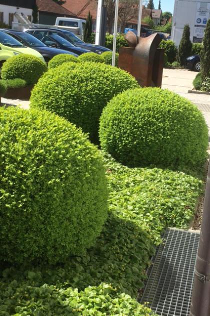 Referenzen von Högg Garten- und Landschaftsbau: Gewerbliche Anlagen